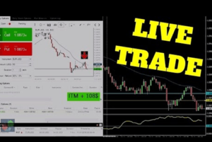 Can you live off binary options